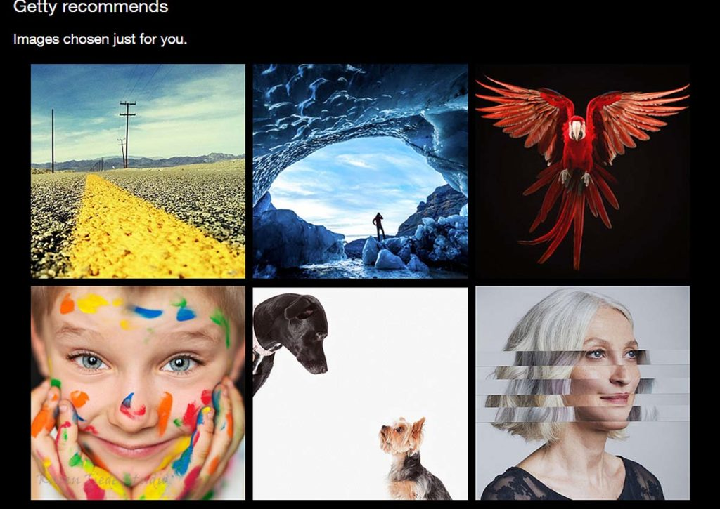 Suggested images from Getty. The dogs are Amanda Jones; love the parrot.