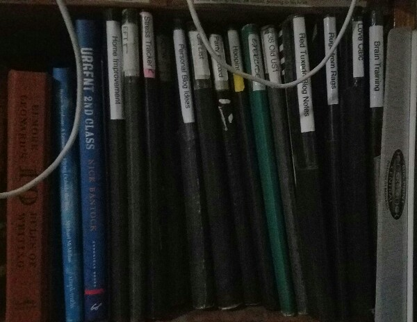 One set of notebooks, some of which have article notes.